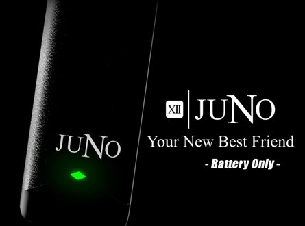 Twelve Juno 380mAh Battery Only with USB Charger